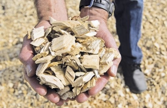 The Rising Trend Of Biomass And Biogas In Asia
